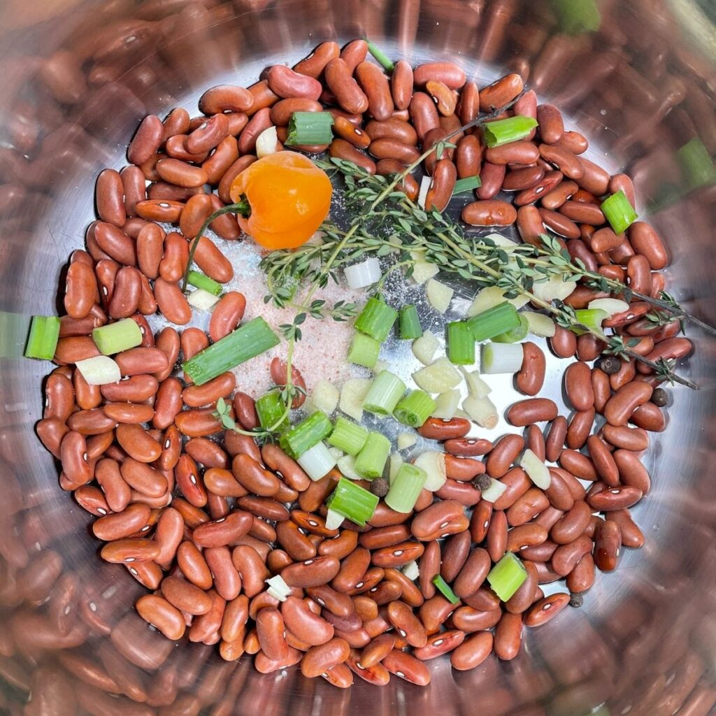 Kidney Beans for Jamaican Rice and Peas